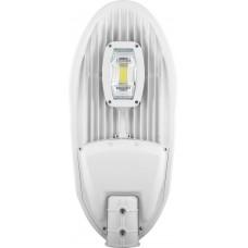 SP2554 Светильник уличный светодиодный, 1 LED 60W 6400k